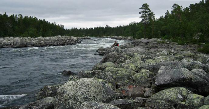 Foto: Håkan Andersson og Ingemar Rundgren/Fly Fellows
