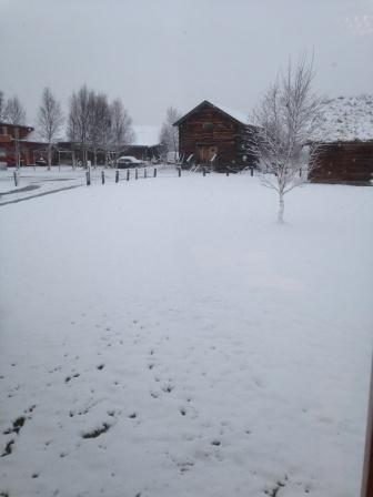Snø høsten 2014web1.jpg