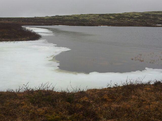 Hognsjøen2.jpg