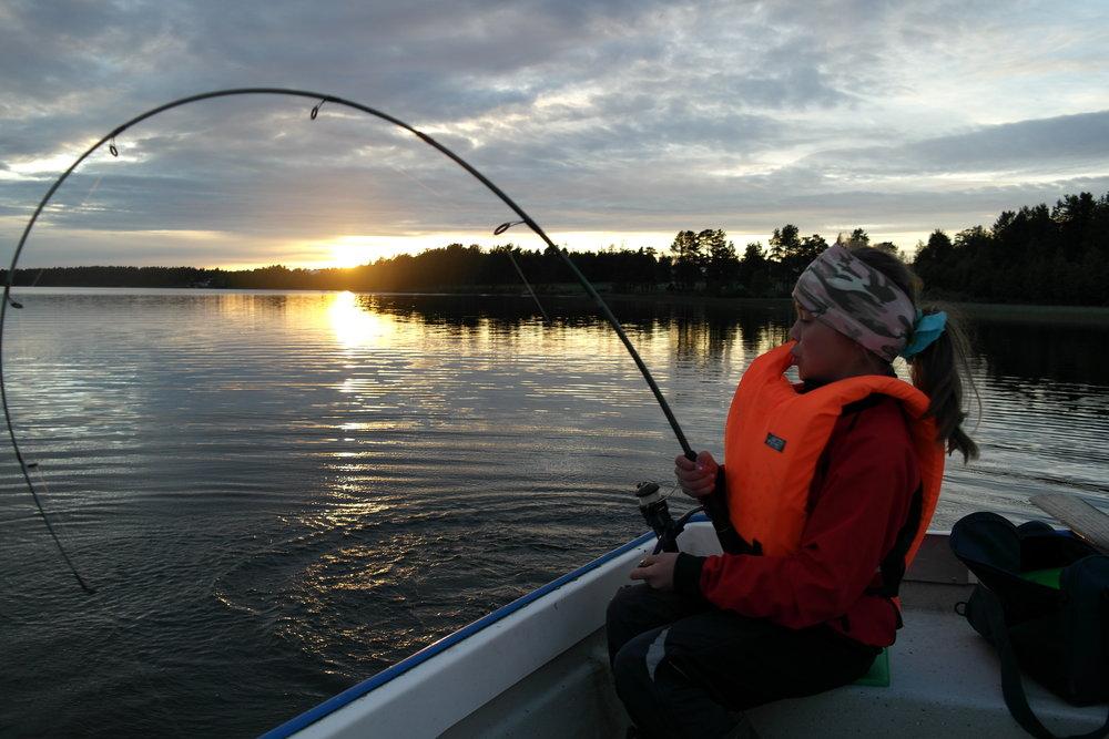 Silje fisker gjedde i solnedgang.jpg
