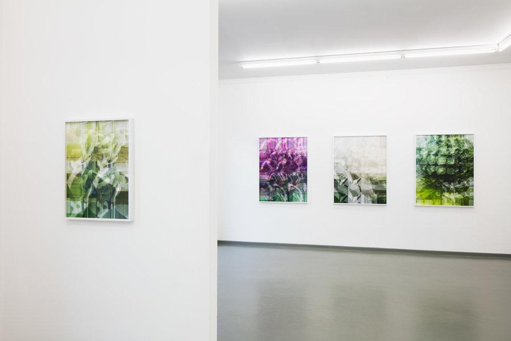 Ausstellungsansicht BLOSSOM WORKS, Rasche Ripken, 2018