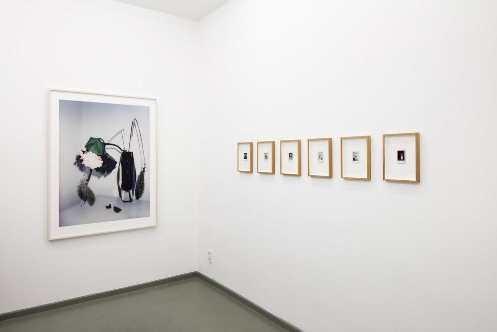 Ausstellungsansicht BROKEN FLOWERS 1-6, Rasche Ripken, 2018
