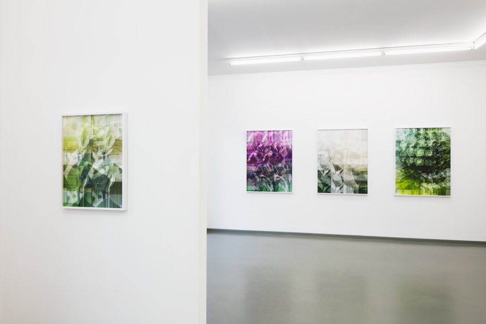 exhibition view BLOSSOM WORKS, Rasche Ripken, 2018
