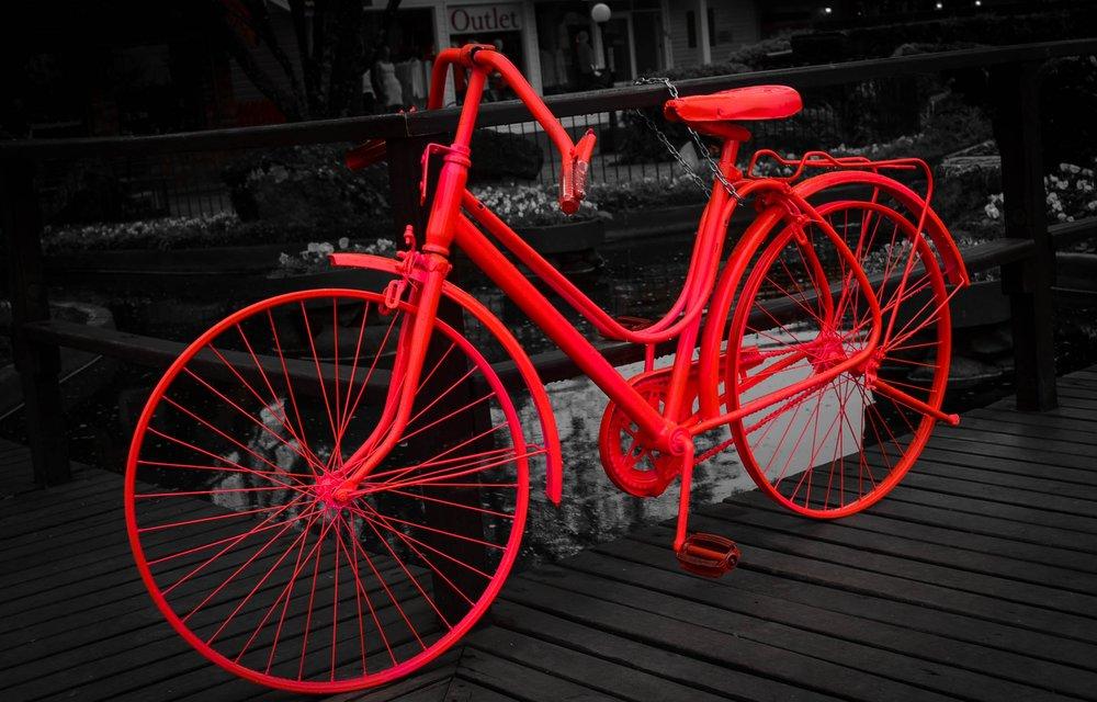 white-night-wheel-retro-bicycle-bike-1226113-pxhere.com.jpg