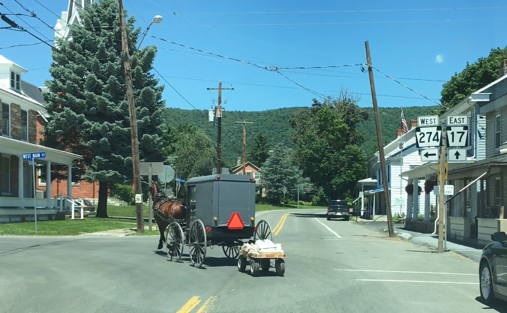 An Amish buggy in Blain, Perry County
