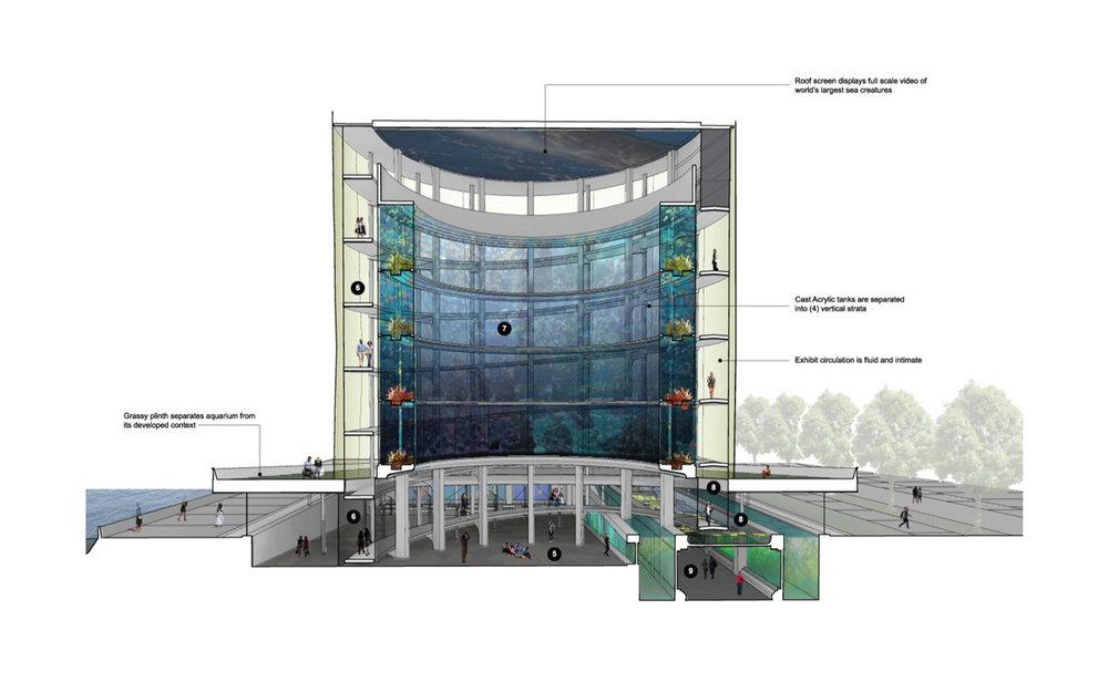 02_wunderground_aquarium_architectural_competition_short_section.jpg