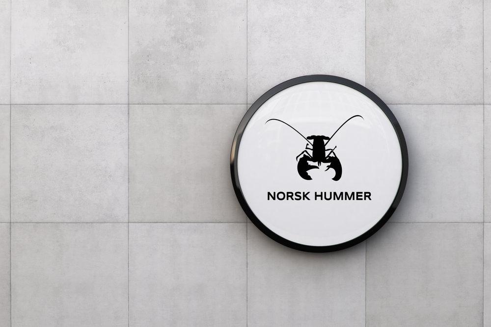 NORSK HUMMER