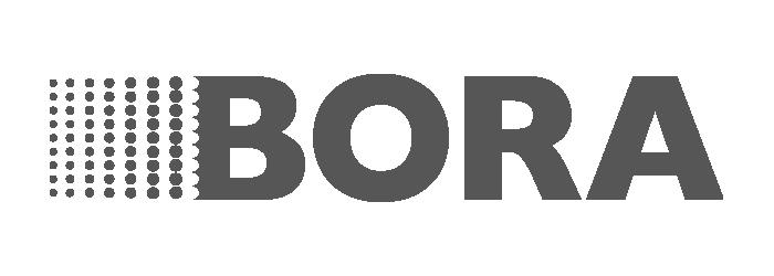 Bora Logo PNG.png