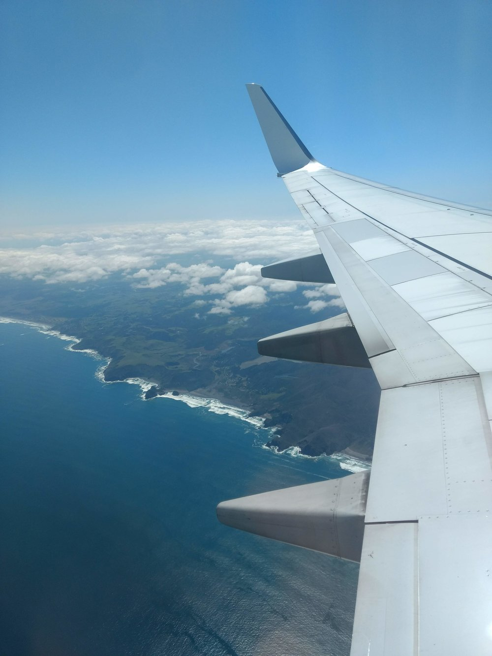 The first sight of the NZ coast.