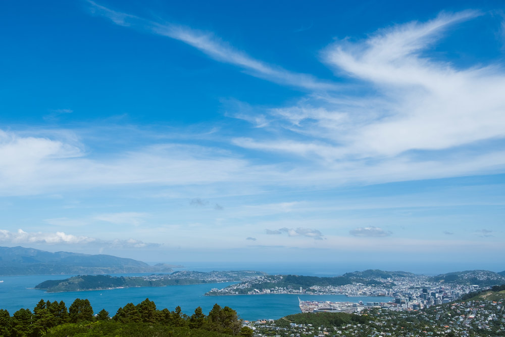 A view of Wellington from the mountain top behind our house.