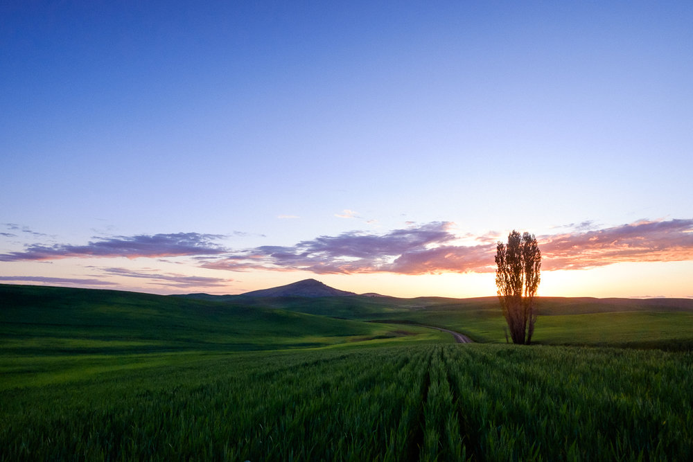 Sunset behind Steptoe Butte, WA