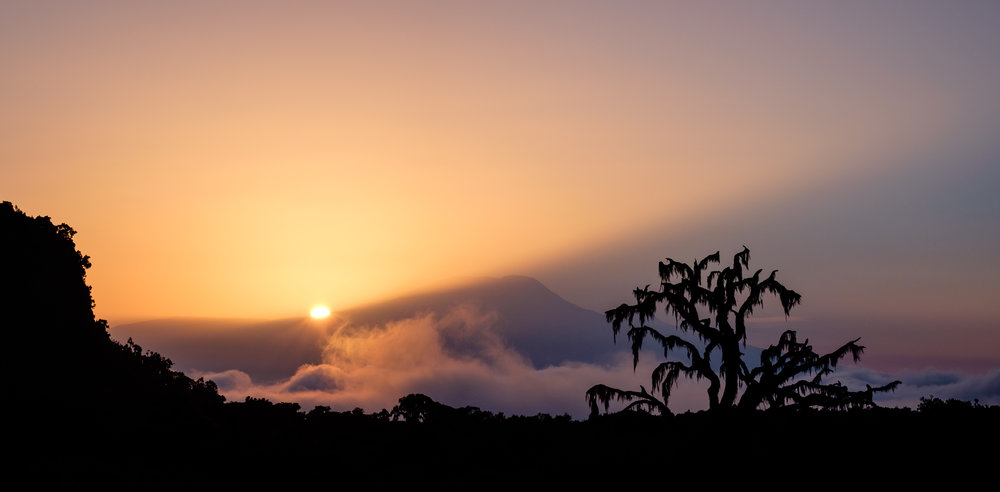 The sun rises behind Mount Kilimanjaro, Tanzania.