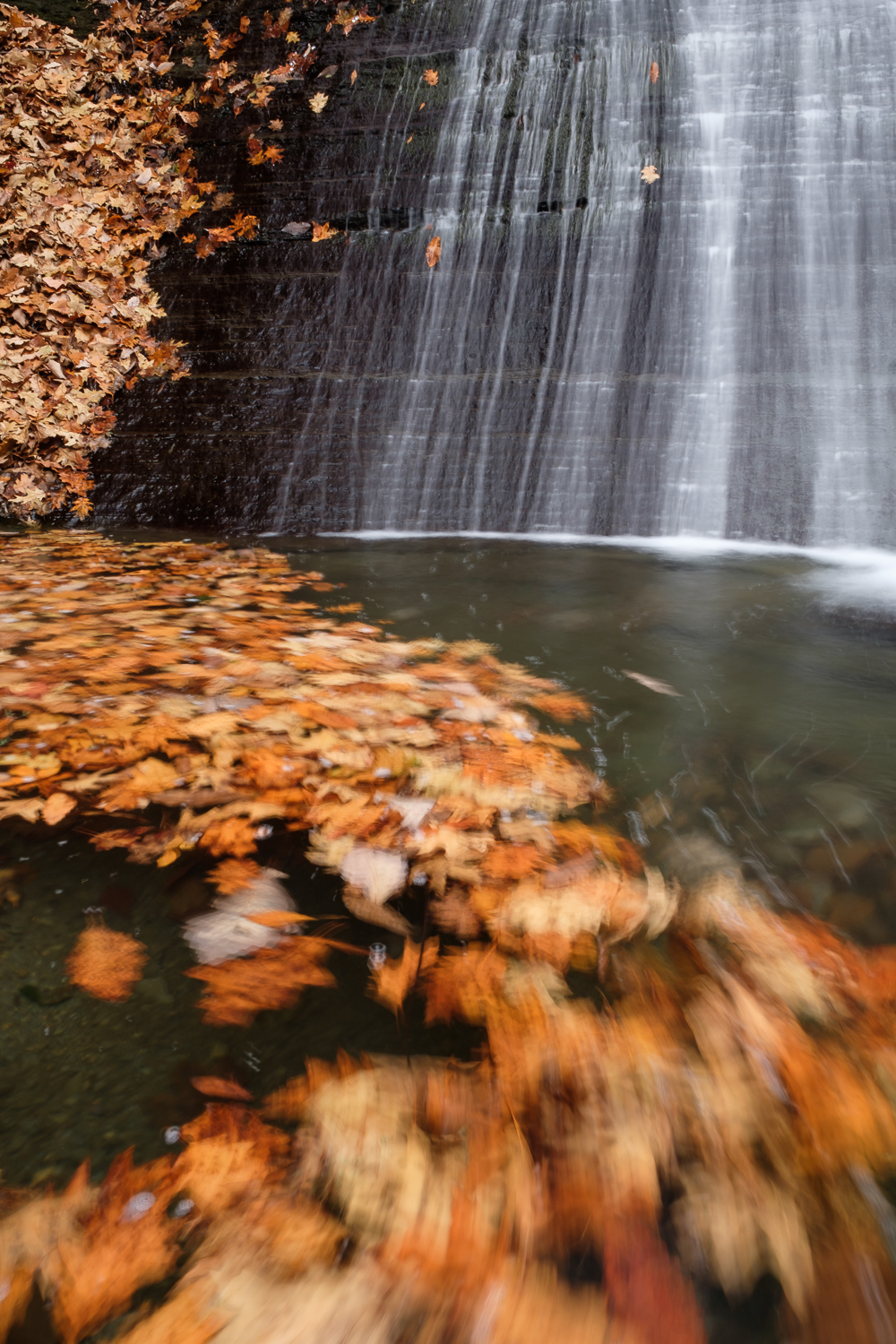 Water flows over a slab of exposed rock in one of the many gorges in the Finger Lakes region of New York State.