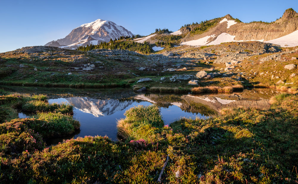 A small tarn beneath Knapsack Pass reflects Mount Rainier at sunrise.