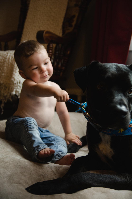photo-d-un-enfant-avec-un-gros-chien-photographe-de-famille-a-domicile-montreal-victoriaville-enfant-lifestyle-61.jpg