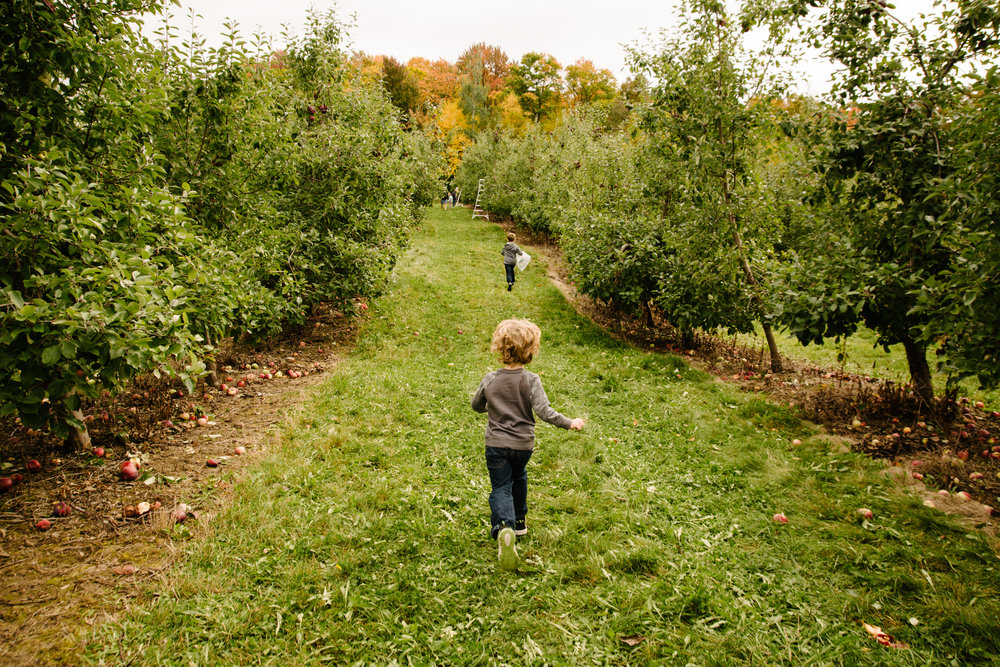 mini-seance-aux-pommes-verger-des-bois-francs-plessisville-photographe-famille-victoriaville-montreal.jpg