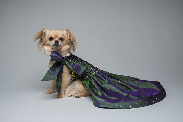 Dog Dresses — Furdrobe