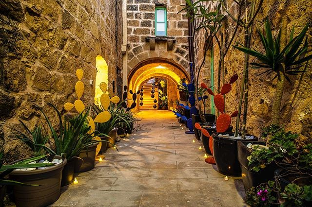 Because it's  #Friday here's a delightful view and colours of the welcome you can expect at 37 Gozo. Happy Friday everyone, have a good weekend. What are you upto? . .  #travel #landscapes  #nature #lovemalta #lovegozo  #hotel #lovinmalta  #boutiquehotel #luxury #luxuryhotel  #gozoisland #malta #wanderlust #homehotel  #37gozo #thirtysevengozo  #hiphotels  #gozomalta #holiday #vacation #visitgozo  #maltagozo  #gozo  #ilovetravel  #visitmalta  #beautifulhotels #islandlife