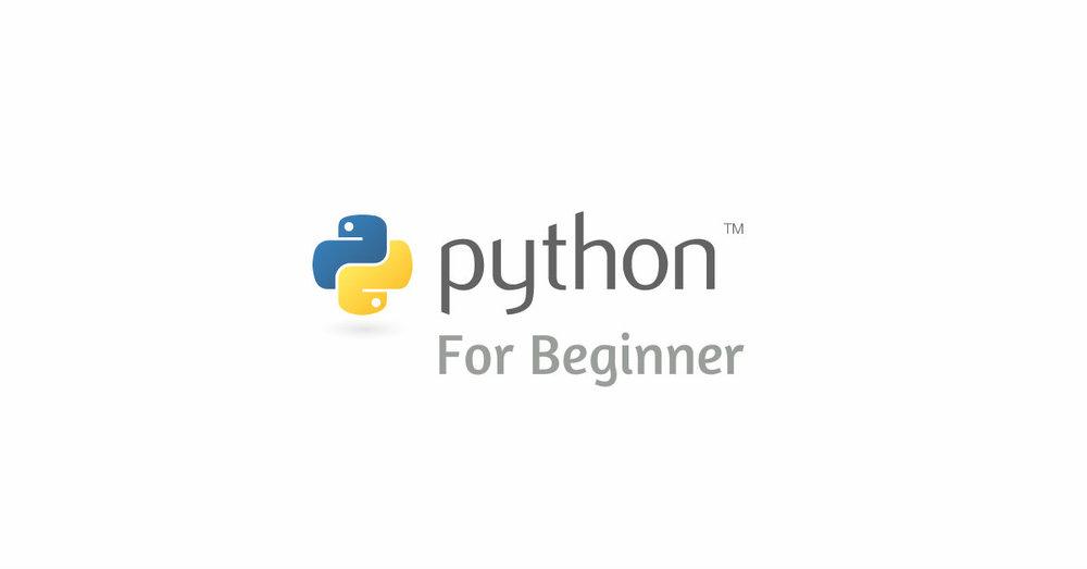 Python Beginner.jpg