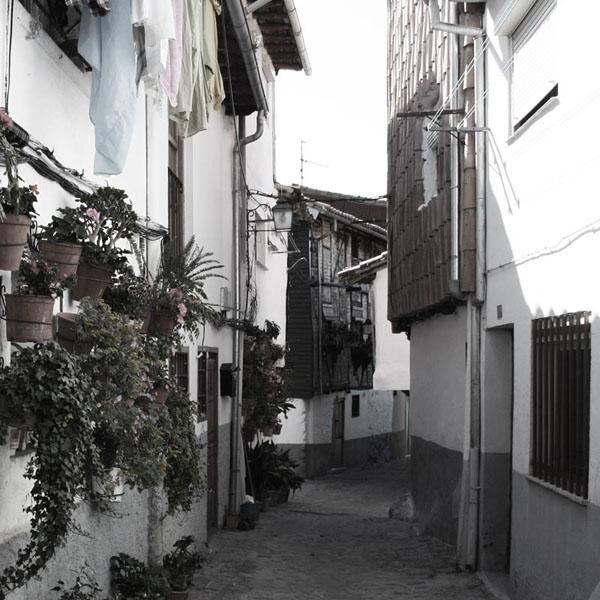 Calle macetas