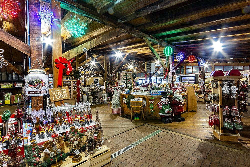 winter-season-christmas-trees-reston-farm-market-va (13).jpg