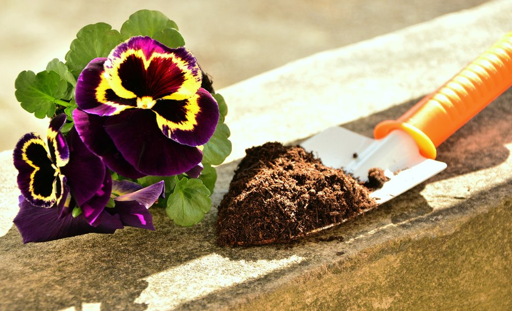 spring-gardening-reston-va.jpg