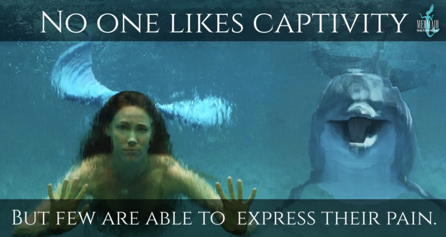 The Effects of Captivity, A Mermaid's View - Dolphin Project - No one likes Captivity, but few are able to express their pain.