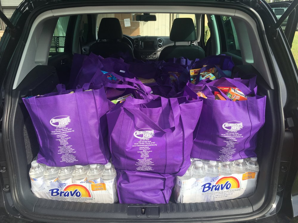 Purple Bags in car.jpg
