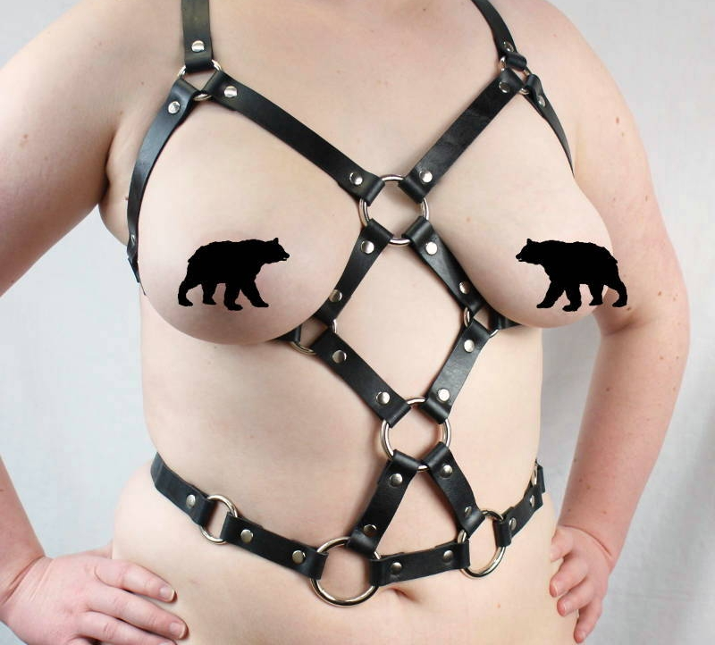 Shop Harnesses -