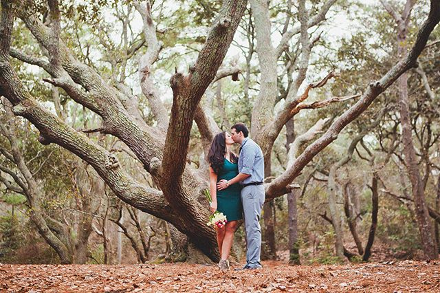 """Those that truly love have roots that grow towards each other underground, and when all the pretty blossoms have fallen from their branches, they find that they are one tree and not two."" - Louis de Bernieres 🌳 I don't remember the words that were said under that big live oak. I remember him and me, punctuated by a winking officiant, a tree-climbing niece, and barking dogs. But are the promises you make on your wedding day what make a marriage? Looking back on the past four years, it's more about the days after. The ones where, despite what's happening in this crazy, beautiful, challenging and sometimes tragic life around us, we make those promises over and over again to one another - not in lengthy prose or fancy vow renewals, but in our choices and actions. More than anything else in life, I'm grateful for the roots we've laid down, for our marriage, and for this family. It really is the best thing. Happy Lee-Jackson Day 🧡 (📸 1-3: @chellepfef, @jacpfef, self timer)"