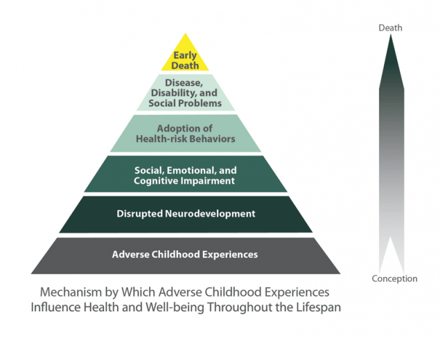The CDC-Kaiser Permanente Adverse Childhood Experiences (ACE) Study is one of the largest investigations of childhood abuse and neglect and later-life health and well-being.