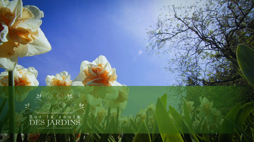 Jardins Screen shots-18.jpg