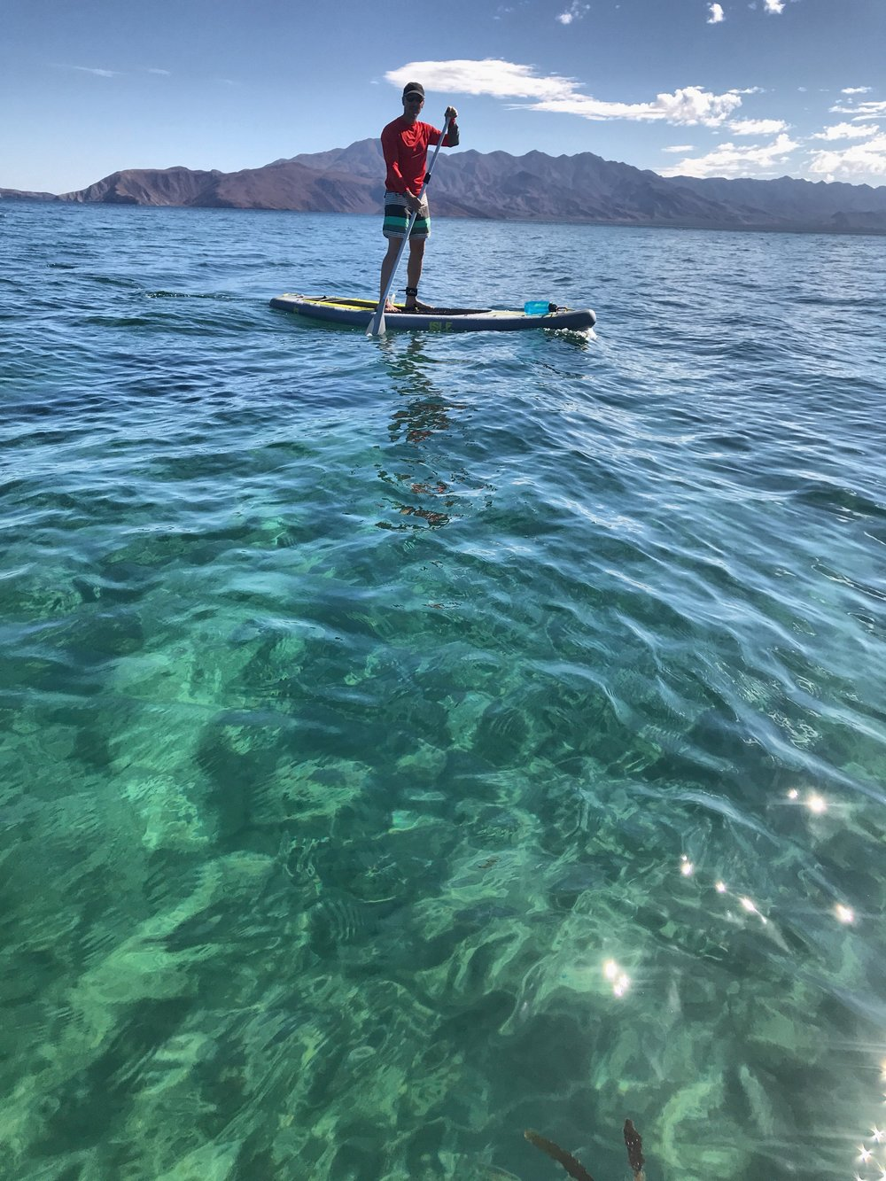 The Sea of Cortez and her sultry green waters. We paddled for hours watching dolphins, sea turtles, sting rays, and tons of fish.