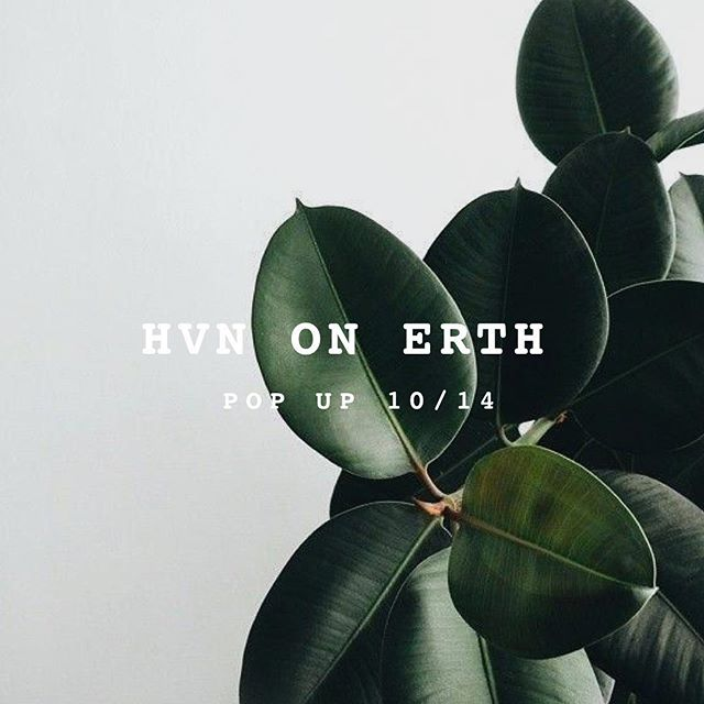 This Sunday 10/14 Hvn on Erth will be popping up with their plant based tacos & beauty tea ✨🌱 good vibes, culture, & quality food. We'll see you there!