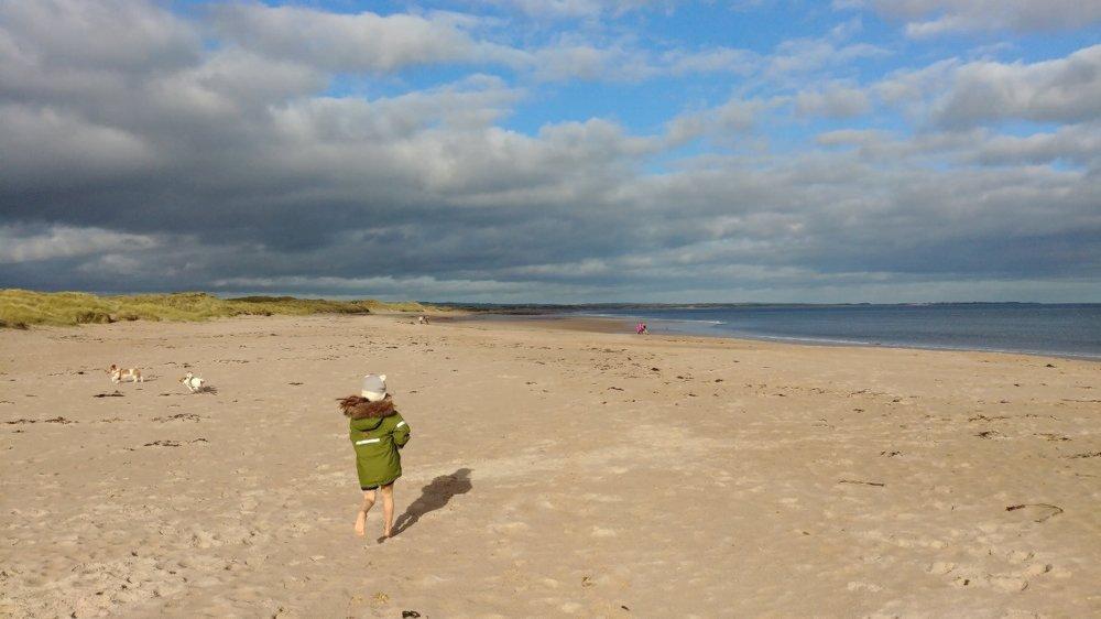 Small girl, big beach.