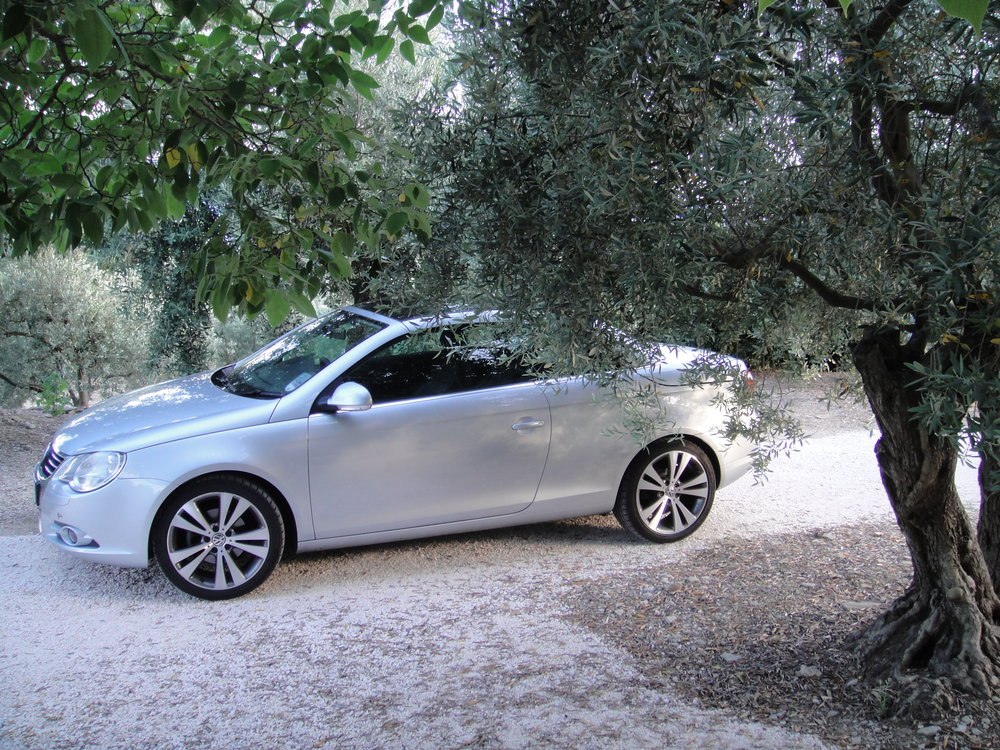 Olive grove parking space.