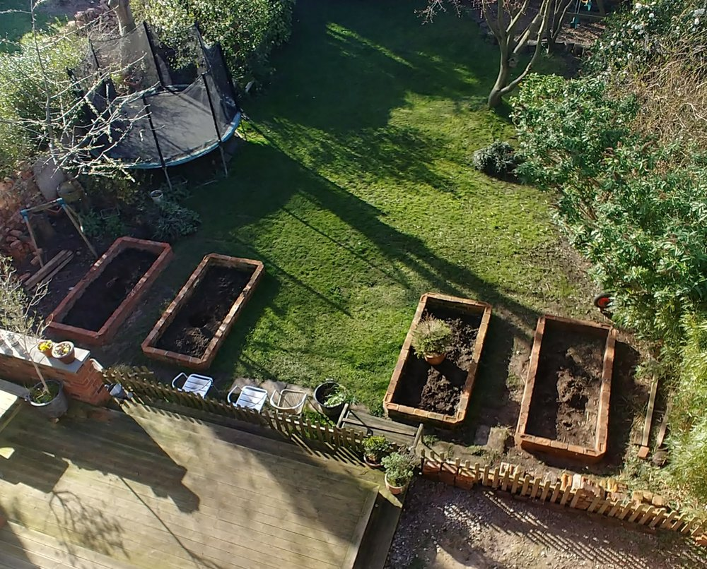 Four luscious and long-awaited raised beds.