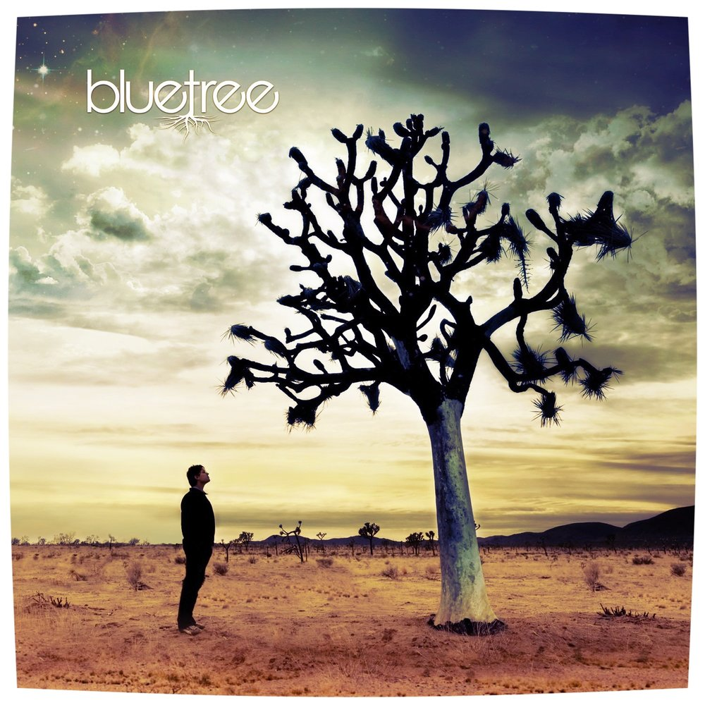 Bluetree > God of this City -