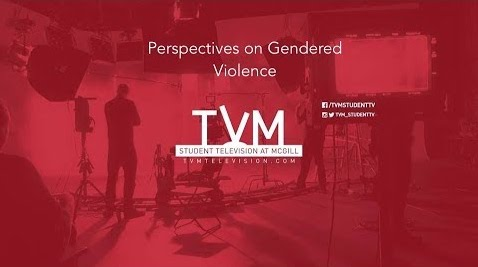 Perspectives of Gendered Violence
