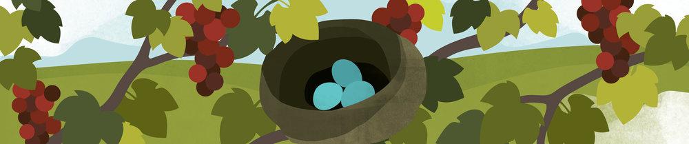 Nest-Banner.jpg