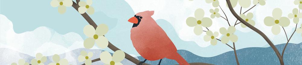 Cardinal-Banner.jpg