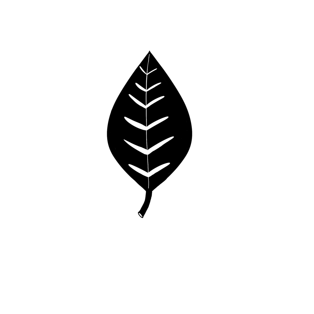 plant_icon.png