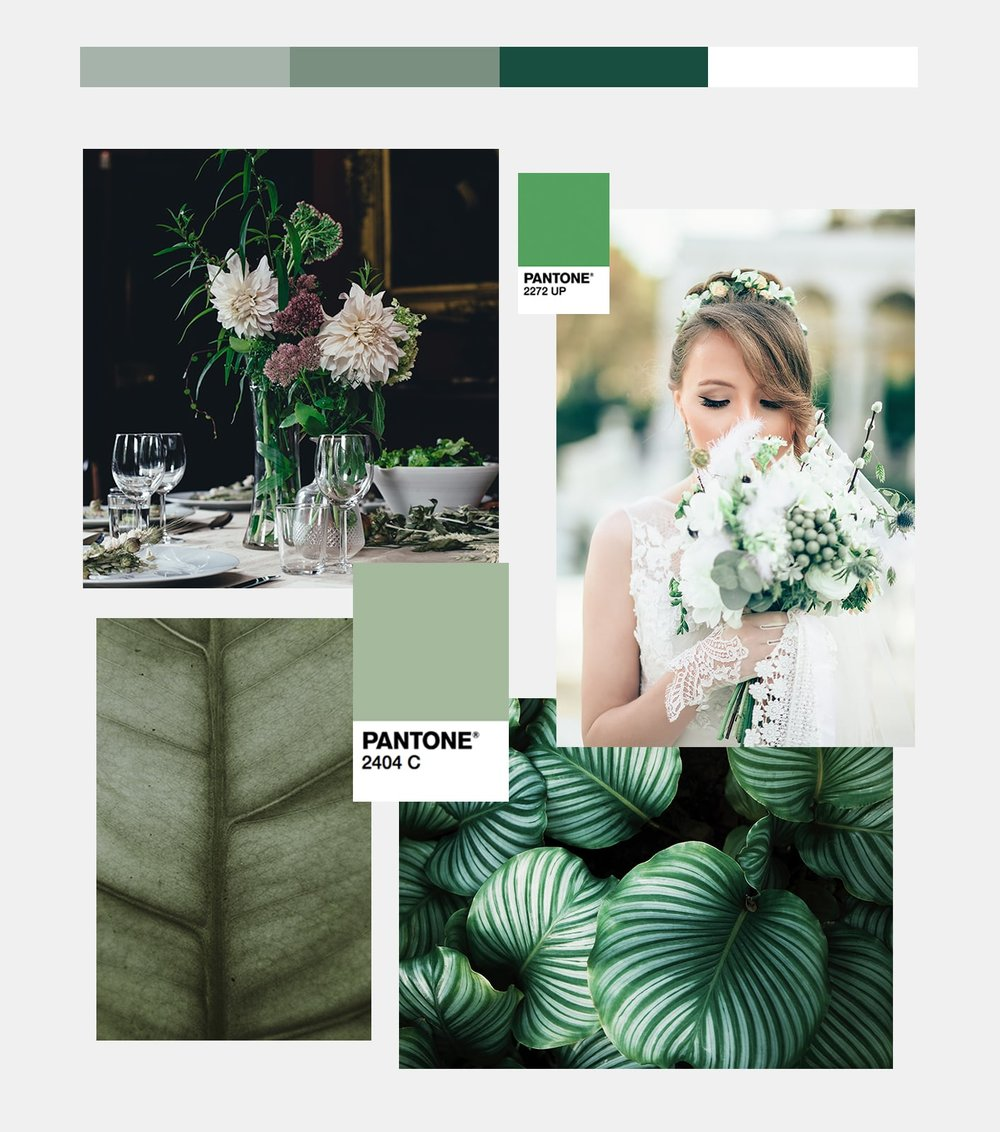 WeddingTrends2018-green-min.jpg