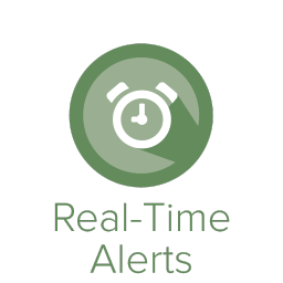"""Provides real-time, actionable intelligence & alerts designed to optimize promotional allowances, measure customer loyalty, and identify problem and/or """"under-valued"""" players (as well as non-hosted players in-need-of-attention) to drive customer profitability -"""