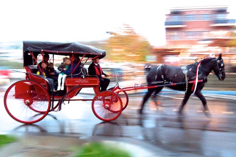 Carriage-Ride-2.jpg