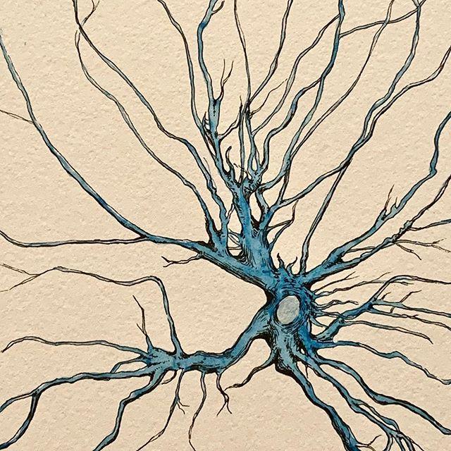 SOMA 001 #neuromission . . . #art #artscience #scienceart #neuron #neurology #neuroscience #neurons #neurobiology #neuropsychology #illustration #medicalillustration #synapse #drawing #neurological #anatomy #neuroanatomy #nonprofit #miami