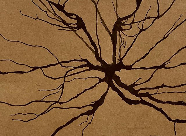 Silhouette 001 #neuromission . . . #art #science #artscience #scienceart #neuron #neurology #neuroscience #neurons #neurobiology #neuropsychology #illustration #medicalillustration #synapse #drawing #neurological #anatomy #anatomyart #anatomicalillustration #neuroanatomy #neuroart #nonprofit #miami