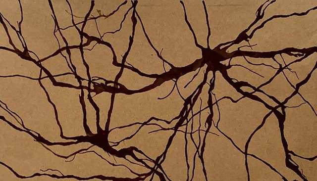 Silhouette 002 #neuromission . . . #art #science #artscience #scienceart #neuron #neurology #neuroscience #neurons #neurobiology #neuropsychology #illustration #medicalillustration #synapse #drawing #neurological #anatomy #anatomyart #anatomicalillustration #neuroanatomy #neuroart #nonprofit #miami