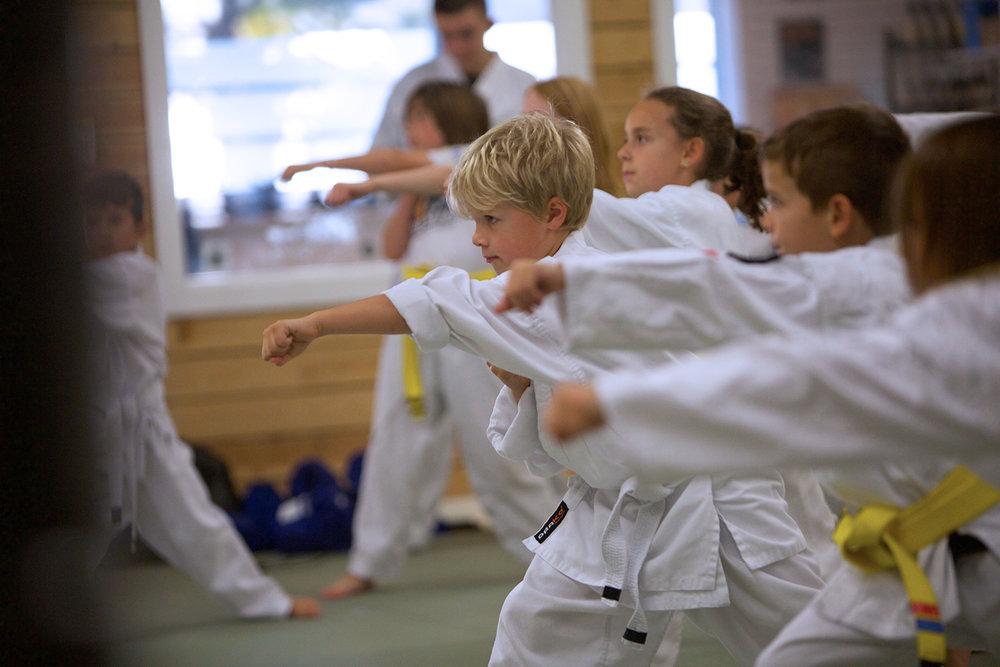 Martial Arts -