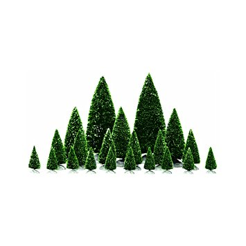 Evergreen Tree 2.jpg